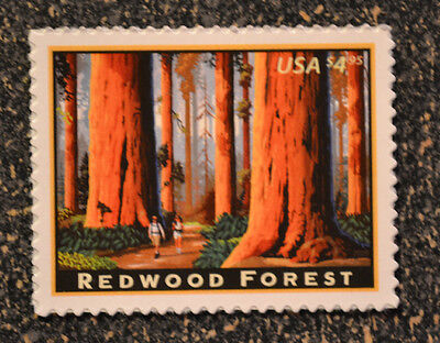 2009USA   4378   $4.95  REDWOOD FOREST  -  PRIORITY MAIL  -  MINT  NH