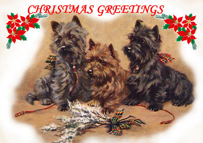CAIRN TERRIER SINGLE DOG PRINT GREETING CHRISTMAS CARD