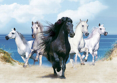 Stunning Poster Print - 5 Horses *DISCOUNTED OFFERS*  A3 / A4