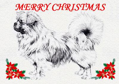 TIBETAN SPANIEL SINGLE DOG PRINT GREETING CHRISTMAS CARD