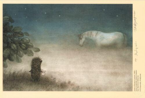 Hedgehog in the Fog Norstein