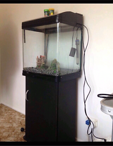Tank and stand for sale Regents Park Auburn Area Preview