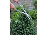 Hedgecutting and Garden Maintenance