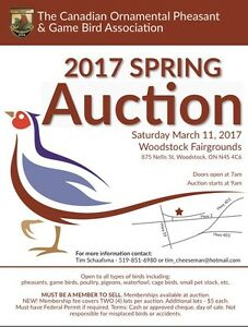 C.O.P & G.B.A Spring Auction!!!
