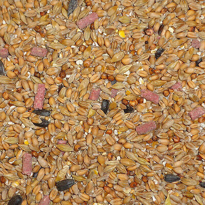 25 kg Dawn Chorus Wild Bird Original Seed Mix Garden Bird Food / Bird Feed