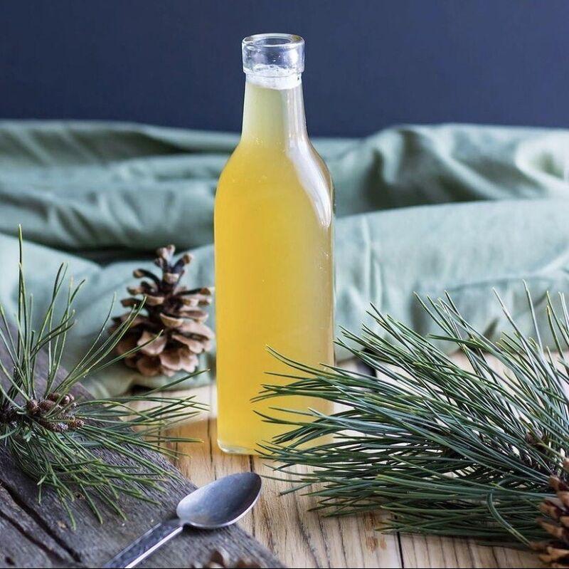 Organic Fresh Harvest Eastern White Pine Needles For Immunity Tea 1 Oz