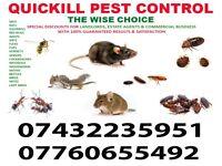 100%Guaranteed CHEAP Pest Control 24/7 Bedbug Rat Mice Ant Cockroach Wasp Flea Exterminator