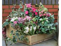 Brand new unusual three tier sturdy garden planter