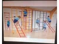 Gym climbing frame