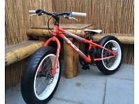 Child's Fat Bike