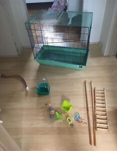 Bird cage for sale with all accessories!