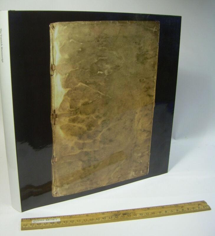 Voynich Manuscript ILLUSTRATED CODEX Cryptography Glyphs alchemy LIMITED