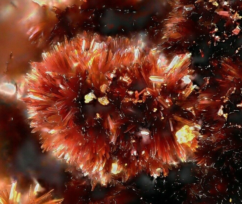 Hewettit Vanadium Queen Mine, La Sal, San Juan County, Utah, USA