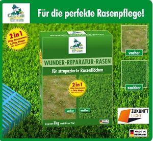 CAPTAIN GREEN * WUNDER REPARATUR RASEN * SET RASEN + DÜNGER + MOOSVERNICHTER 1Kg