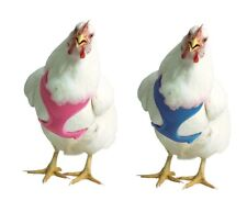 Chicken Harness for chickens ducks & geese  - XS - M - award winner - 5 colors