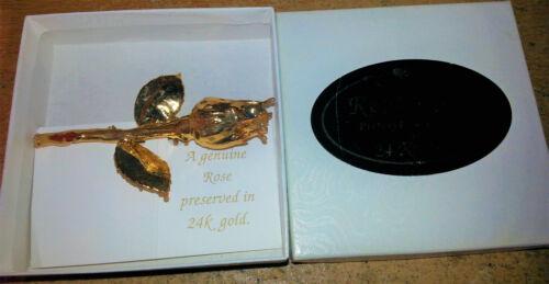 "Vintage Real Baby Rose Pin Dipped 24K Gold 3-1/4"" long"