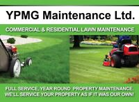 Resodding Grass Cutting Lawn Aeration Spring Clean Ups FreeQuote