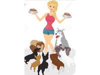 DOG BABYSITTING 🐶 REGISTERED BY DOG SITTERS ⭐️🌟