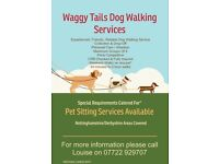 Waggy Tail Dog Walking Services, Fully insured and CRB checked. Experienced, Friendly. From £6.