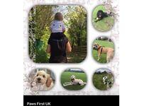 Paws First UK. Professional dog walking, cat/puppy visits dog sitting