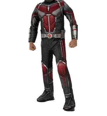 Marvel Ant-Man & The Wasp Boy's Muscle Chest - Wasp Marvel Kostüme