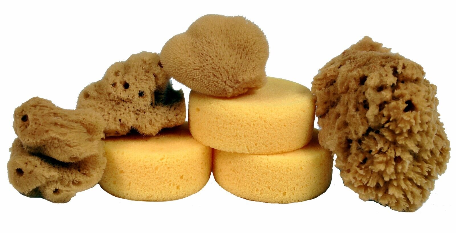 7 Synthetic and Natural Silk Sponges for Painting, Crafts, Ceramics, Pottery Art Supplies
