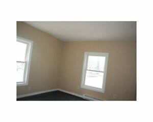 2 Bedroom Unit - 5 minutes from Downtown London Ontario image 9