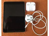 iPad mini 1 wi-fi