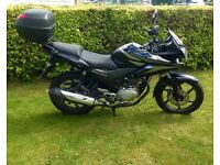 2013 Honda CBF 125 - 125cc - Great motorbike for learners - Cheap to run - Cheap to insure