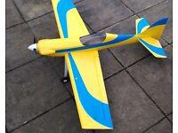 Chris Foss Foam E AcroWot - electric RC plane