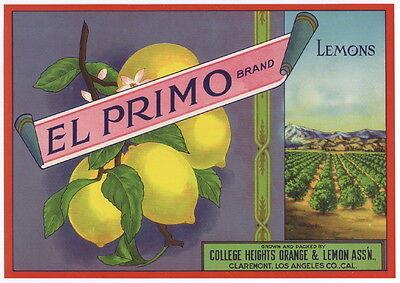 El Primo Vintage Claremont Lemon Crate Label  Orchard  Grove  An Original Label