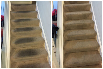 Tripro Melbourne--End of Lease and Carpet Cleaning