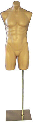 Adult Male Fleshtone Plastic Body Headless Mannequin Torso Display With Base