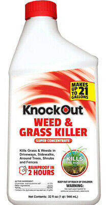 Knockout Weed and Grass Killer Makes 21 Gallons Concentrate 32-Fl Oz  Grass Killer Concentrate