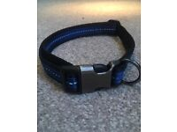 Pets at Home Refective Stripe Dog Collar - Blue - Large