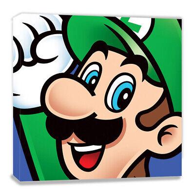 Nintendo, Leinwanddruck, 40 x 40 cm, Wandbild (Mario X Luigi)
