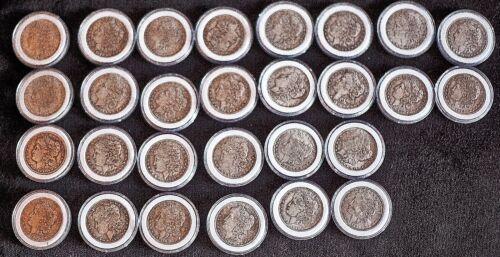 Guaranteed fake 38 novelty souvenir Morgan silver dollars, 1878 to1904 +1921