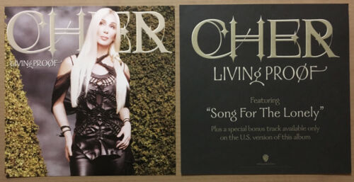 CHER Rare 2002 DOUBLE SIDED PROMO POSTER FLAT for Living Proof CD 12x12 MINT USA