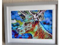 colourful photo print on canvas of young stag.