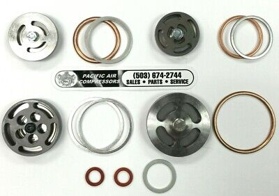 Z5155 Champion Complete Valve Kit With Gaskets For R10d R15 Pump 26dp06