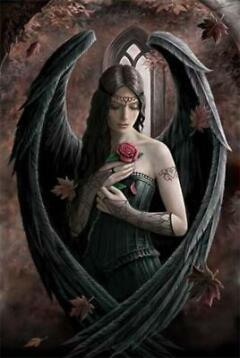 Anne Stokes: Angel Rose - poster
