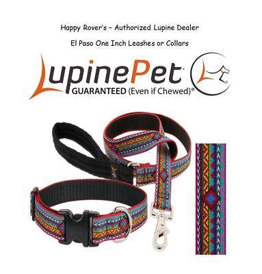 Lupine Lifetime Dog Leash or Collar - 1