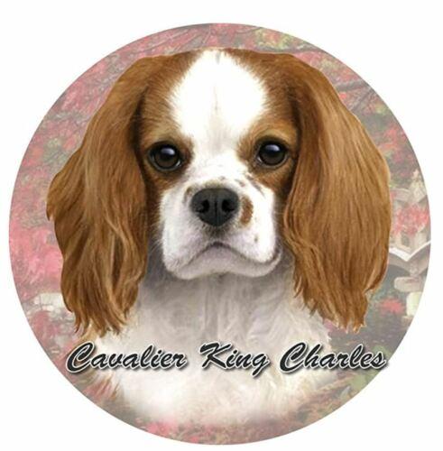 Cavalier Dog Absorbent Car Coaster Stoneware Auto drink Cup Holder