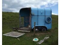 horse trailer wanted