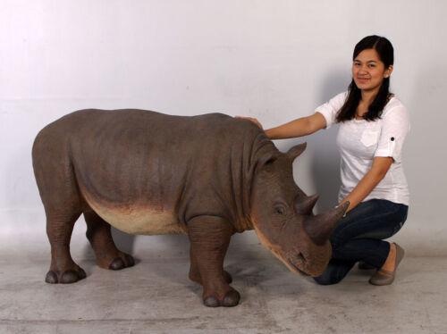 Rhinoceros Small