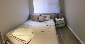 Furnished Private Room in Newly Renovated Dee Why Apt !! Dee Why Manly Area Preview