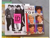 One Directions books x 2 £2.00
