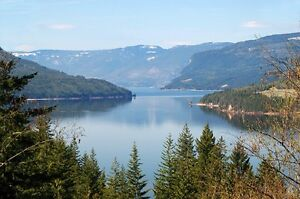 ISO Small Cabin / RV rental in Shuswap!