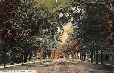 Unadilla  Ny  New York     Main Street Scene Residential Area     1909 Postcard
