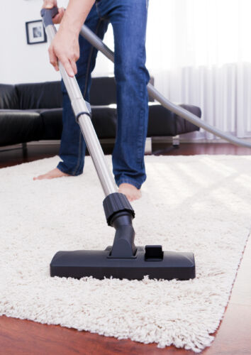 cats and dogs can make great pets but they also can leave hair all over carpets and furniture all this pet hair is unsightly can get stuck on clothing - Best Vacuum For Furniture